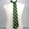 Striped UAlberta Neck Tie
