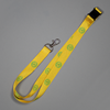 Lanyard - Gold with U of A logo