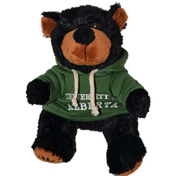 BLACK BEAR WITH A UA HOODIE